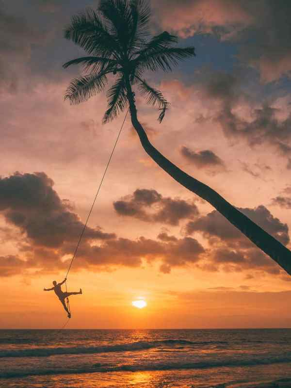 instafamous rope swing, palm tree rope swing sri lanka, places to visit in sri lanka, palm tree rope swing, dalawella beach, unawatuna, unawatuna beach, dream cabana, dalawella rope swing, sri lanka trip, visit sri lanka, sri lanka tourists places, sri lanka itinerary, sri lanka trip, visit sri lanka, sri lanka tourists places, sri lanka itinerary, places to visit in sri lanka, sri lanka holidays, best places to visit in sri lanka, tourist attractions in sri lanka, palm tree rope swing - dalawella beach - sri lanka, 2 weeks in sri lanka itinerary, sri lanka itinerary, 2 weeks in sri lanka, sri lanka itinerary 3 weeks, two weeks in sri lanka, sri lanka two week itinerary, sri lanka travel itinerary, sri lanka travel guide, best itinerary for sri lanka