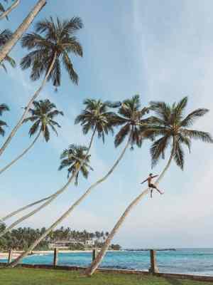 unawatuna beach, unawatuna beach sri lanka, things to do unawatuna, unawatuna things to do, unawatuna beach, unawatuna beach sri lanka