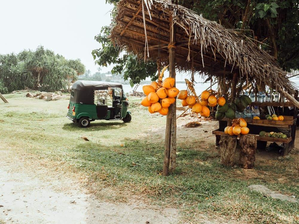 sri lanka trip, visit sri lanka, sri lanka tourists places, sri lanka itinerary, places to visit in sri lanka, sri lanka holidays, best places to visit in sri lanka, tourist attractions in sri lanka, sri lanka tourist places, best beaches in sri lanka, what to do in sri lanka, sri lanka attractions, sri lanka blog, beautiful places in sri lanka, best places in sri lanka, sri lanka points of interest, things to see in sri lanka, sri lanka beaches, midigama sri lanka, midigama
