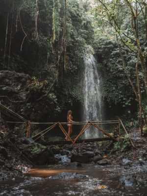 hidden waterfall bali, secret waterfall bali, bali secret waterfall, bali hidden waterfall, aling aling waterfall, aling aling, singaraja, singaraja waterfall