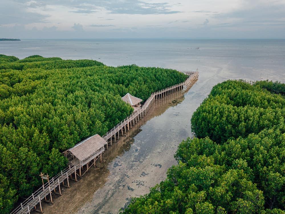 obo-ob mangrove garden, omagieca mangrove garden, bantayan mangrove garden, camp sawi, oboob mangrove garden bantayan