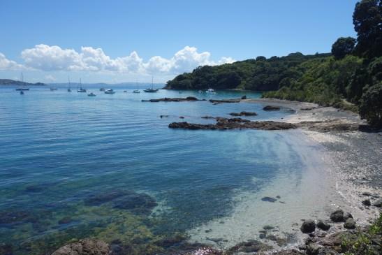 Hobbs Beach, Tiritiri Matangi