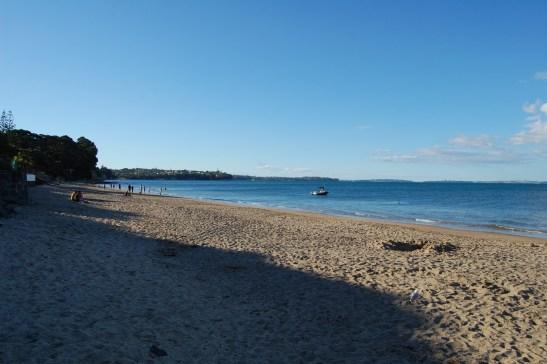 5. DSC_0167 Campbells Bay