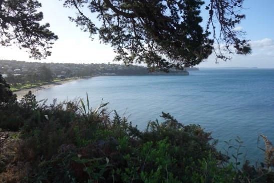 9. DSC00526 Browns Bay
