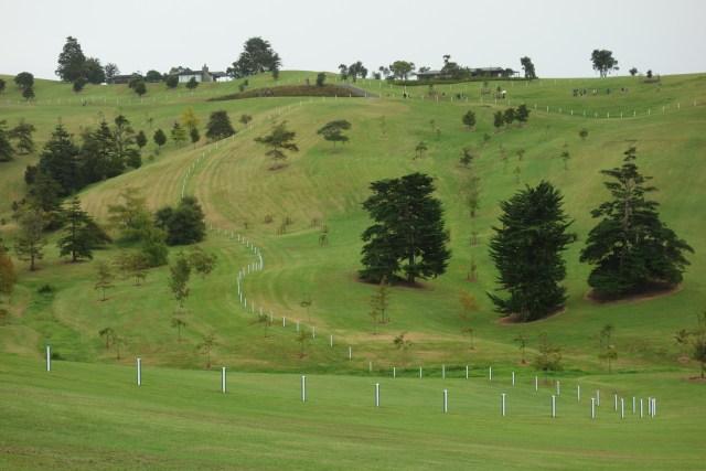 DSC02680 Green and White Fence by Daniel Buren