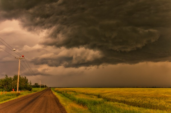 Free photo: Cloudy Weather - Animal, Cloud, Cloudy - Free ...