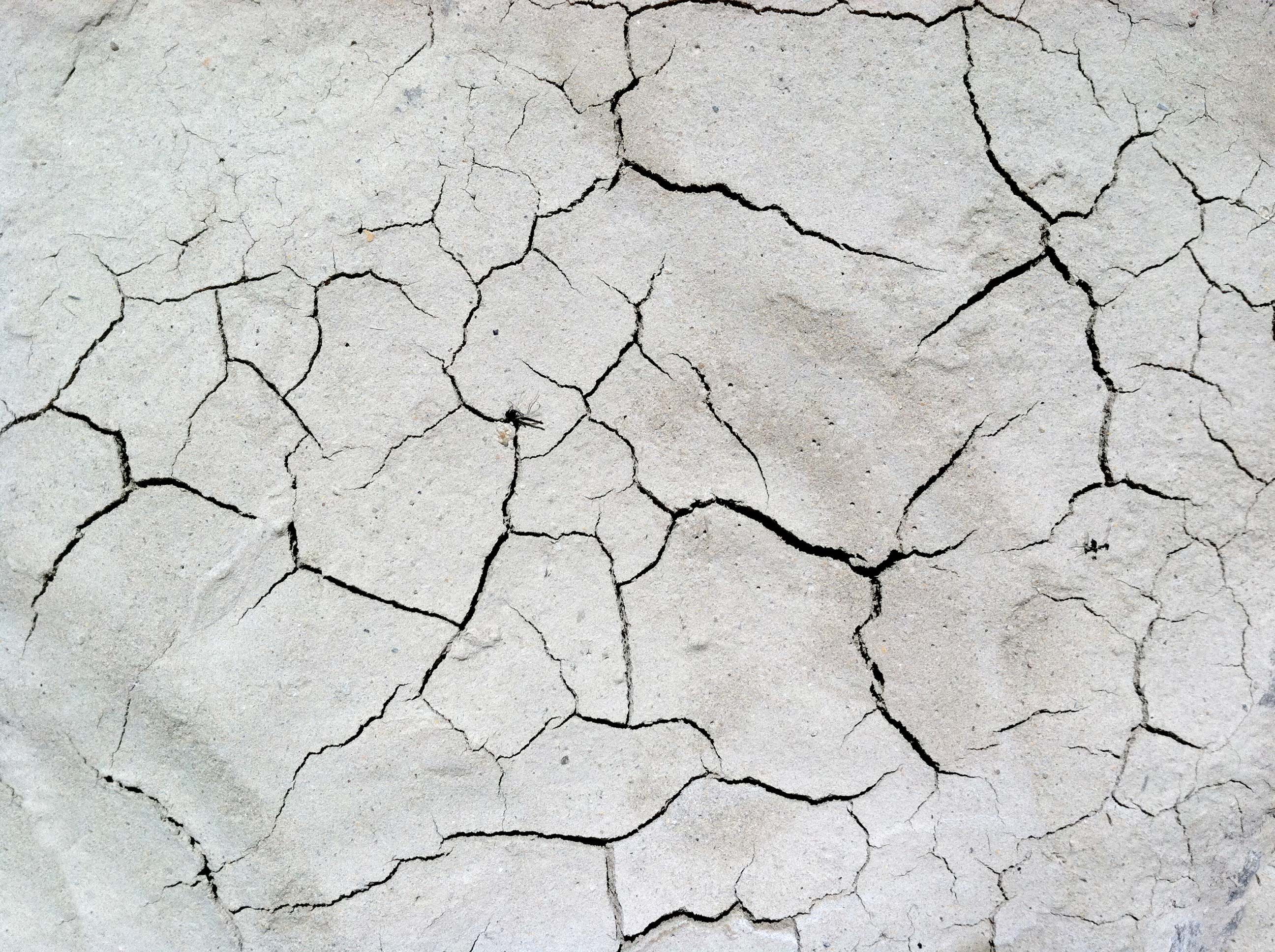 Free Photo Cracked Texture