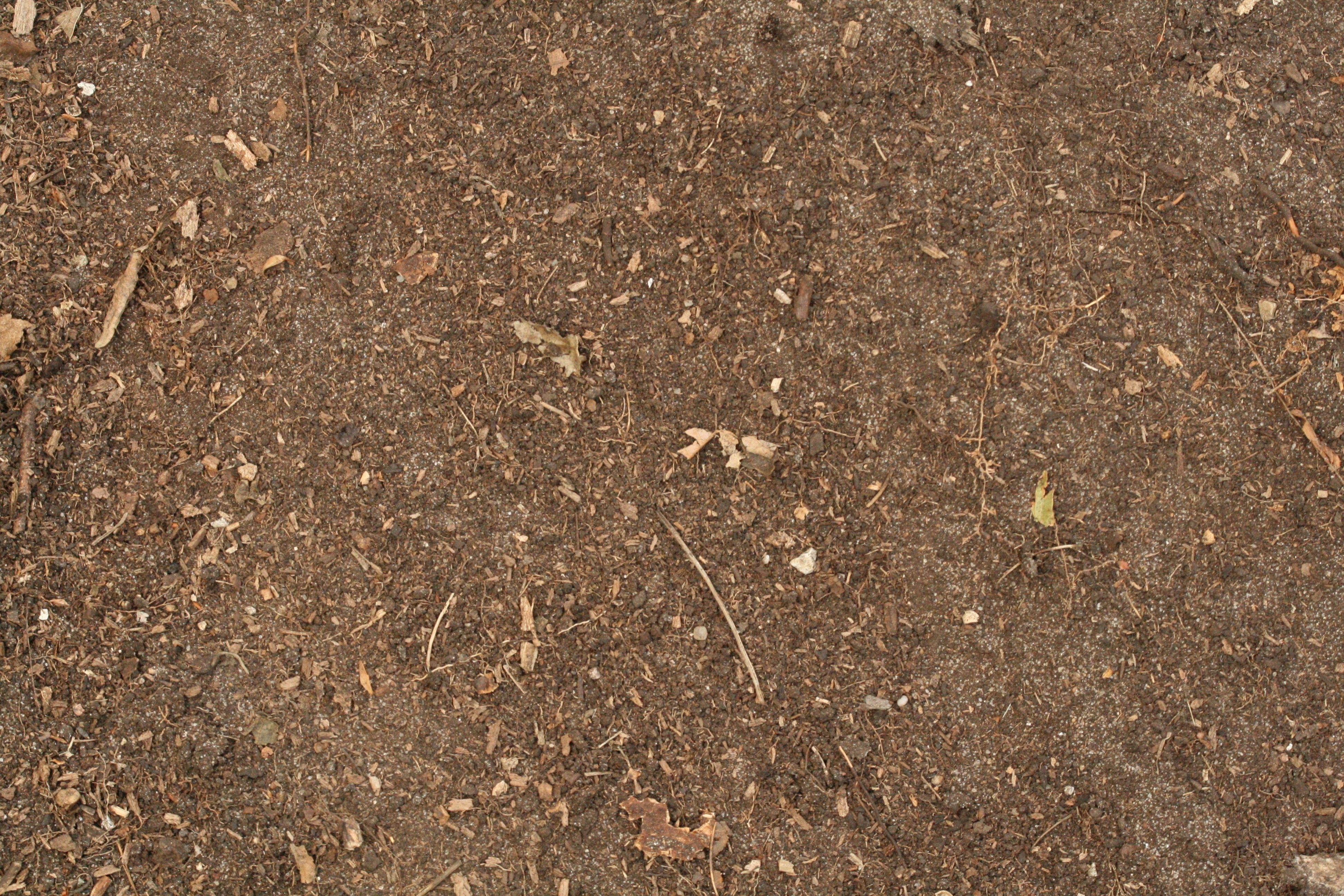 Free Photo Dirt Texture
