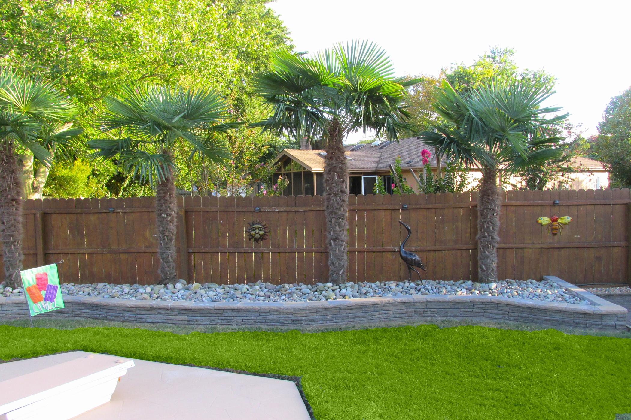 Beautiful Backyard Ideas With Palm Trees | Decor & Design ... on Palm Tree Backyard Ideas id=68788