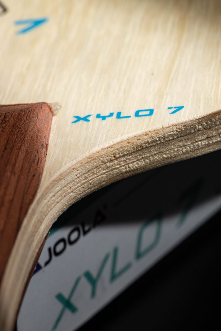 Xylo7-yogibear_02