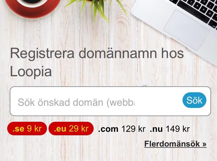 9 kr för domännamn hos Loopia