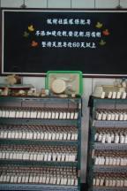 Maple eco-soap studio drying room