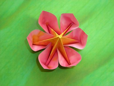 Origami Flowers For Kids