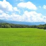 【清里に来てよかったと思えるおすすめのお土産厳選】八ヶ岳の自然に感謝!