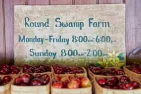 Round_Swamp_Farm_East_Hampton_Jordan_Bush_Photography_04