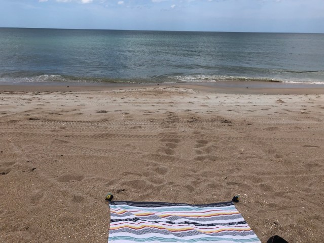 Beach Day with Jay