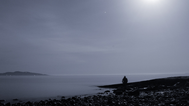 Island View Moonlight