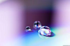 CD Water Drops 1