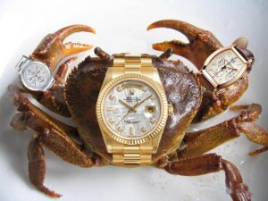A crab wearing three wristwatches