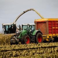 Regeringen vil sætte ind mod landbrugets udledning af kvælstof