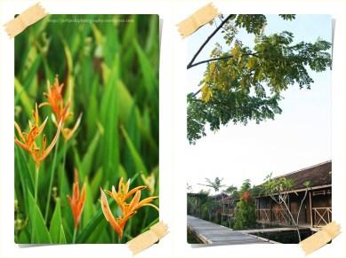 Gardenia Resort 3