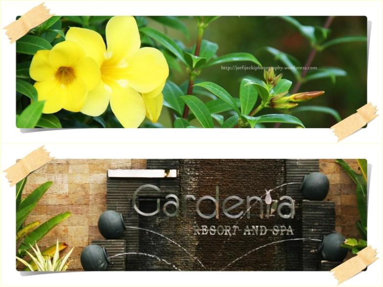 Gardenia Resort 6