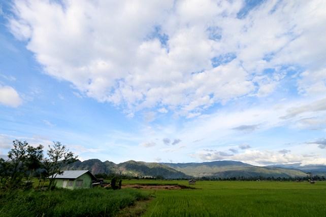 Salah satu view yang bisa kita nikmati di daerah Lembah Napu, kec. Lore - Kab. Poso Sulawesi Tengah