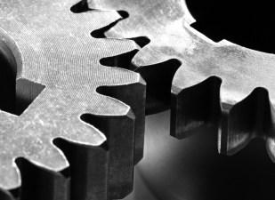 Como los dientes de los engranajes, todo en la naturaleza debe encajar para su correcto funcionamiento. ¿Por qué no se iba a llegar a la misma situación tras un período de tiempo inabarcable y mediante cambios continuos y acumulativos?