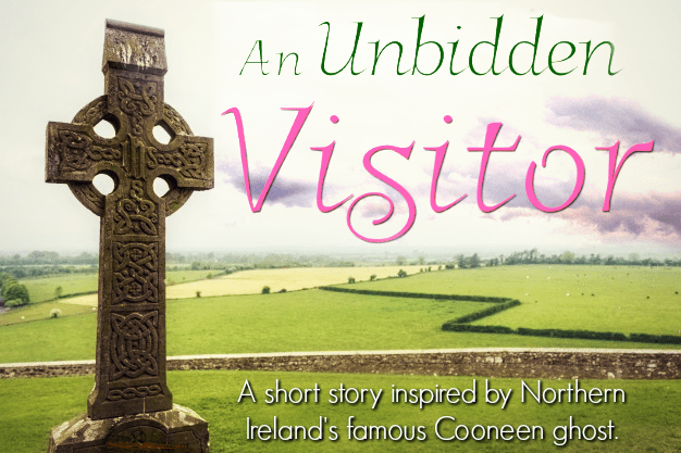 An Unbidden Visitor by Diane Ascroft (audiobook)