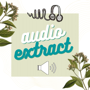 Audio Extract graphic created by Jorie in Canva.