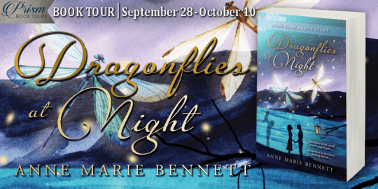 Dragonflies at Night blog tour banner was provided by Prism Book Tours and is used with permission.