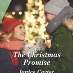 The Christmas Promise by Janice Carter