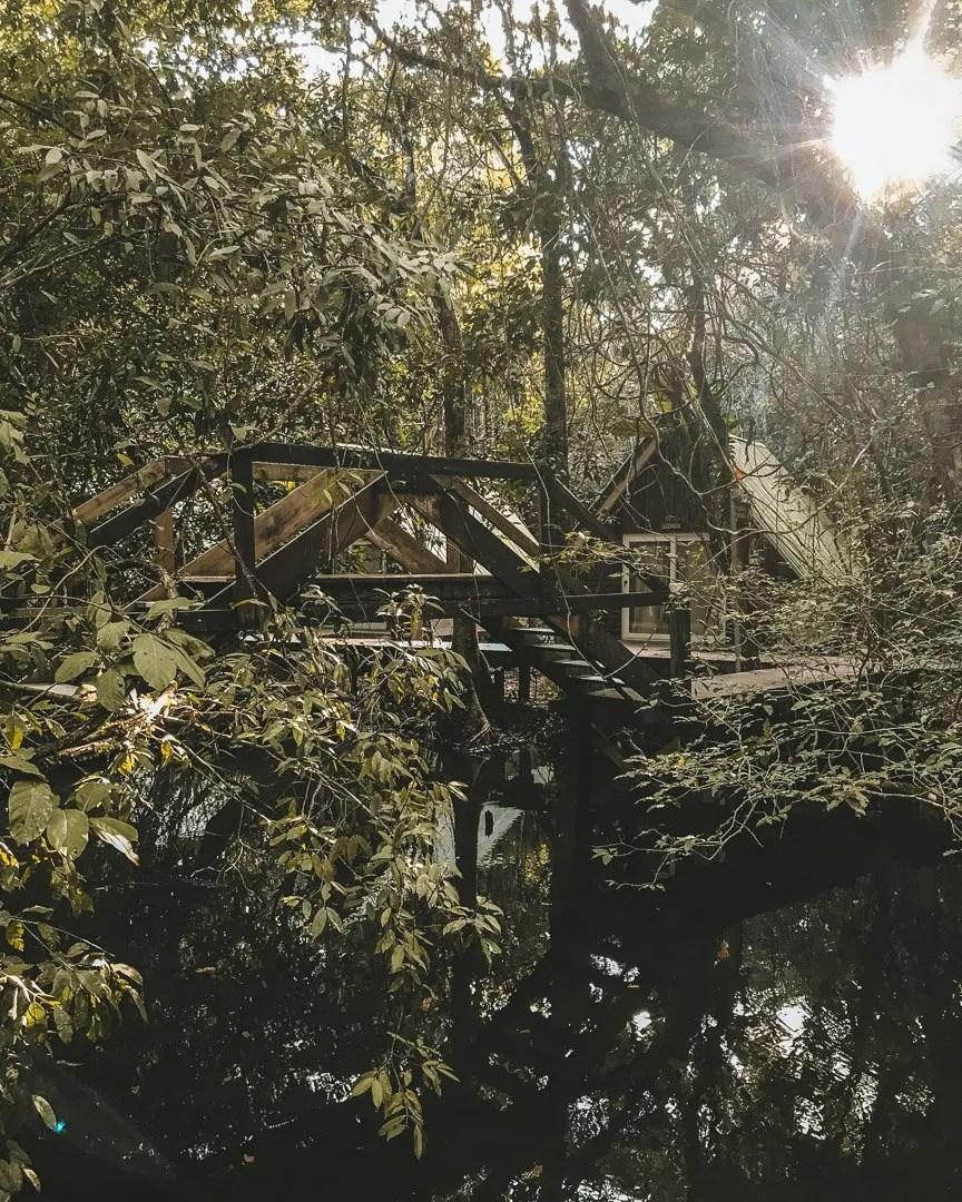 Jungle Lodge Guatemala, Places to stay in Guatemala