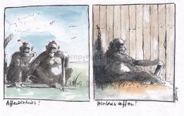 Differenzierte Betrachtungen Affenzirkus vs. Zirkusaffe