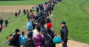 Pesquisa demonstra enrijecimento da política brasileira de reunião familiar de refugiados