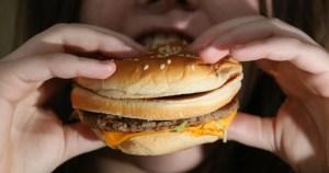 Aumento no número de refeições está relacionado com obesidade no Brasil