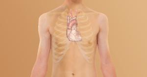 Marcador no sangue indica risco de doenças cardiovasculares