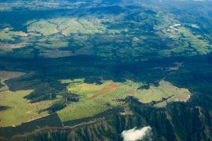 Vegetação não consegue se adaptar a mudanças climáticas drásticas