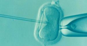 """""""USP Talks"""": cientistas debatem os limites éticos da genética"""