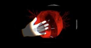 Pulmão virtual mostra estruturas internas do órgão em movimento