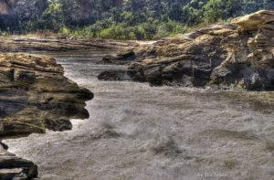 Pesquisadora analisa toxicidade de rejeitos no Rio Doce