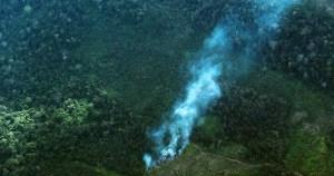 Administrar a Amazônia requer boa vontade política e do povo, alerta especialista