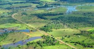 Plano de Recuperação Verde na Amazônia Legal pode gerar mais de 200 mil empregos na região