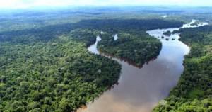 Iniciativa inscreve tecnologias de base científica que utilizam insumos amazônicos