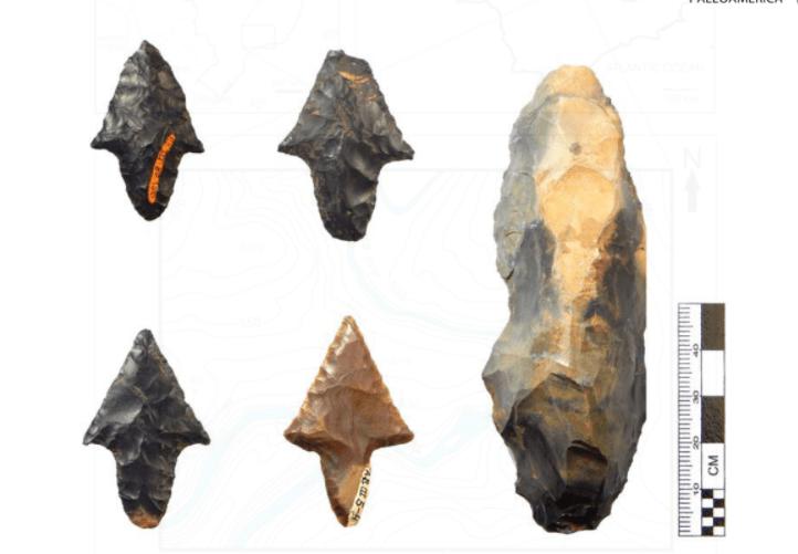 Exemplos de artefatos típicos do sítio de Alice Boer, encontrados durante a primeira escavação: quatro pontos de haste apresentando padrões tecnológicos e morfológicos rioclarenses e uma lesma. Créditos: Reprodução do artigo.