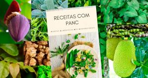 Pesquisadores da USP ensinam como usar plantas alimentícias não convencionais na cozinha