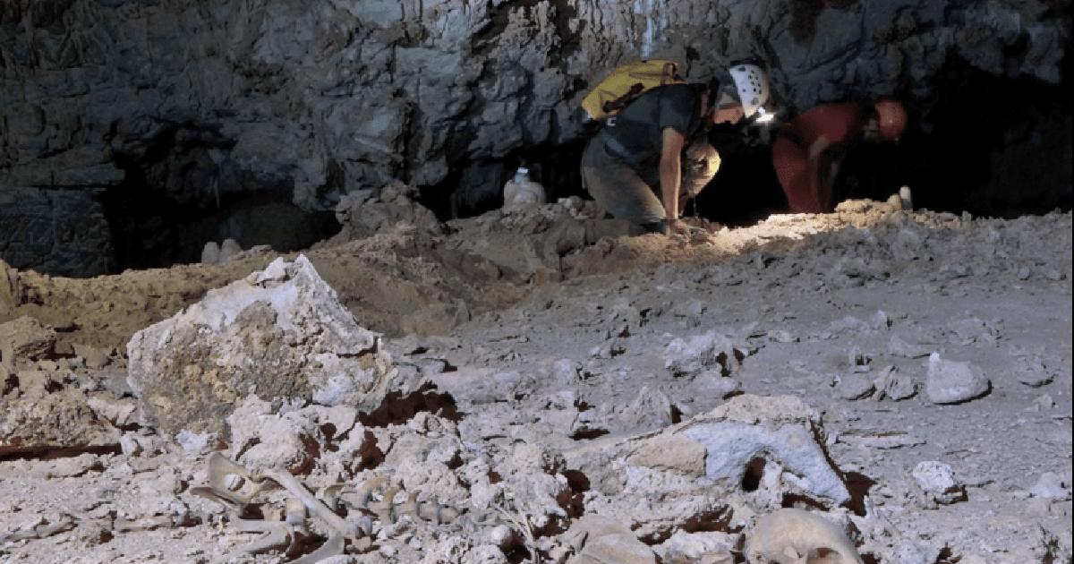 Caverna Toca da Barriguda (BA), com ossada de macaco - Foto: Daniel Menin