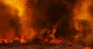 IPCC: se nada for feito, colapso climático é iminente