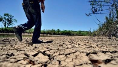 Photo of Seca causou prejuízo de R$ 18,5 bi em 2013, aponta relatório mundial