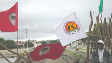 Photo of Movimentos sociais iniciam campanha para fortalecer candidatura de Rui Costa